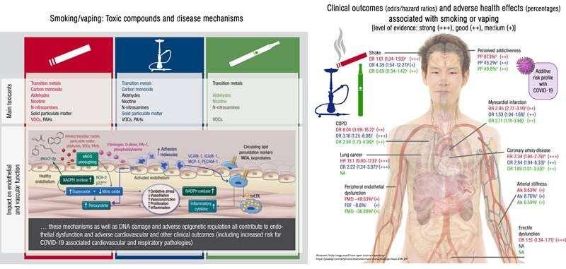 《欧州心血管杂志》报道科学研究:较为了烟草、电子烟、水烟的危害性